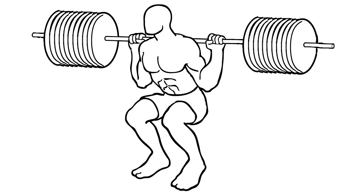 squat10_vectorized_vectorized